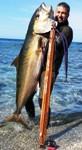 Foto del profilo di submaro