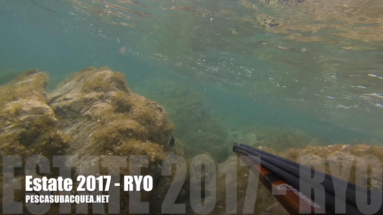 estate-2017-ryo