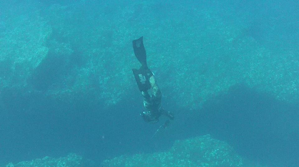 Video che pesca sul Fiume Pechora